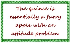 Quince quote