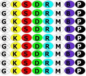 FA box code spots x5