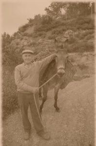 Man & donkey sepia